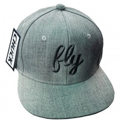 Fly Gray & Silver Snap Back Hat